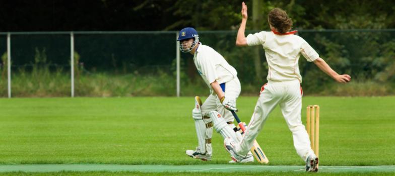 Cricket Maintaining Standards