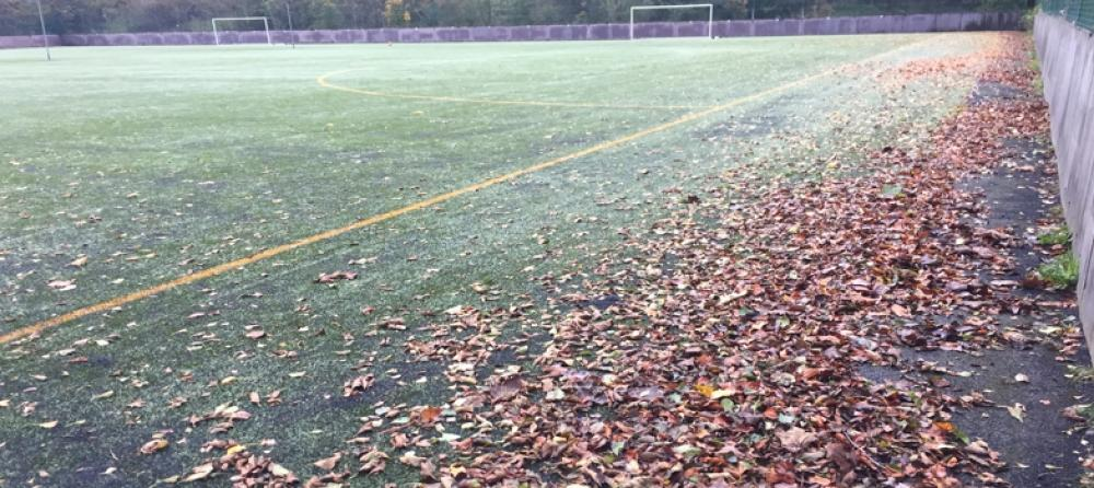 Is your pitch in need of our Leaf Collection Service?